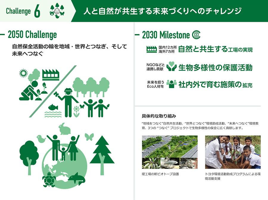チャレンジ6 人と自然が共生する未来づくりへのチャレンジ