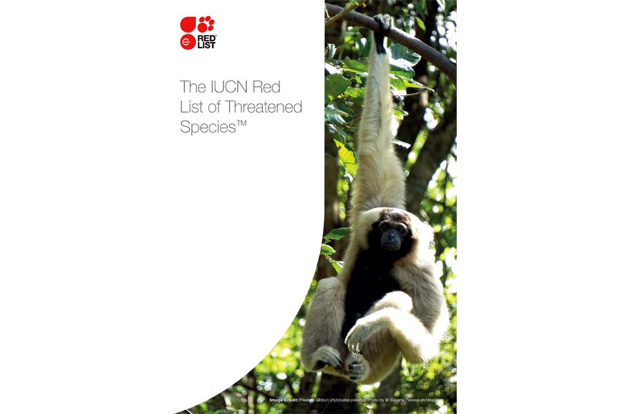 IUCN Red List Brochure 2019