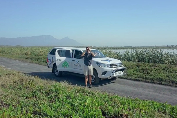 Hilux Birdlife in South Africa