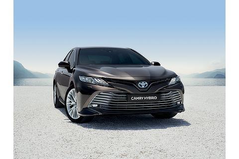 2019 Camry Hybrid