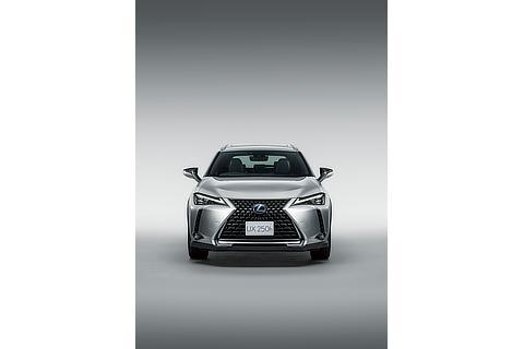 "UX250h""version L"" (ソニックチタニウム) <オプション装着車>"