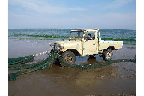 Land Cruiser 40 Series cars continue to be used today, more than 50 years after they were manufactured (pictured here in a fishing village in the UAE)