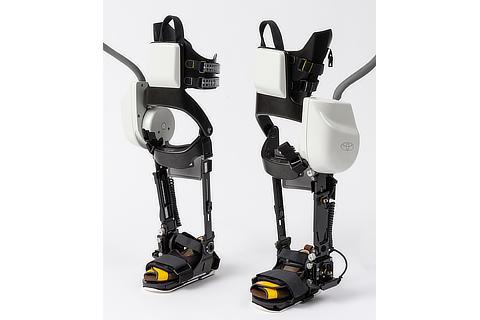 Robotic leg