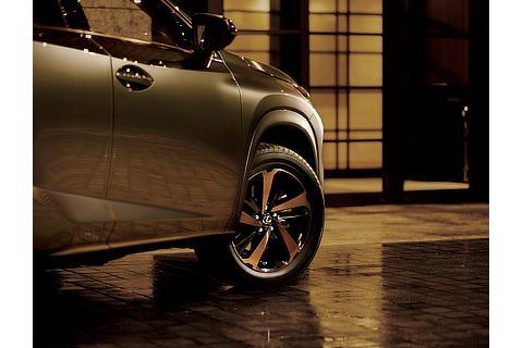 "NX300 特別仕様車""Bronze Edition""(ソニックチタニウム)<オプション装着車>"