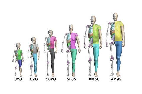 Pedestrian Models