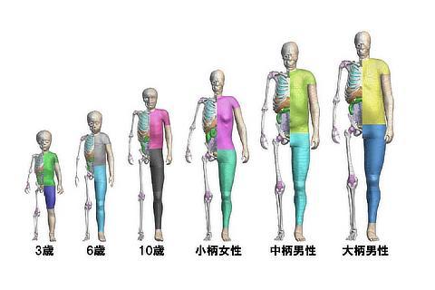 歩行者モデル