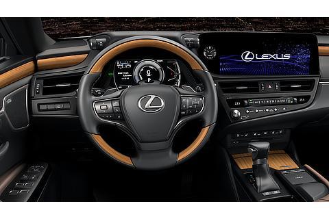 Lexus ES Interior Color Mauve (Prototype)