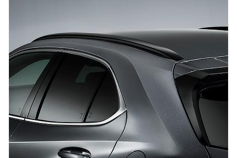 "UX250h 特別仕様車""F SPORT Style Blue"" ルーフレール ※メーカーオプション"