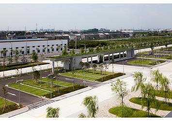 Green parking spaces and roof