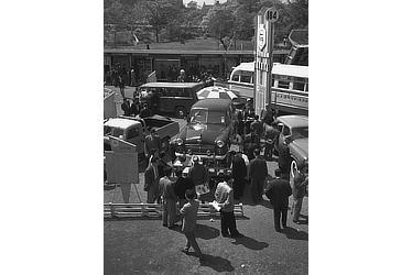 1954年